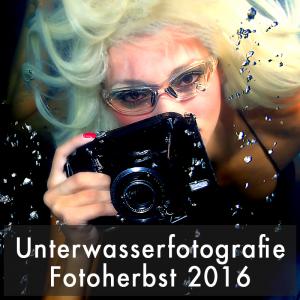 """Fotofestival Sandstein Fotoherbst Sandstein 2016 Fotokurs """"Unterwasser-Fotoshooting"""" Portraitfotografie im und am Pool Sonntag, 6.11.16 ab 11 Uhr"""