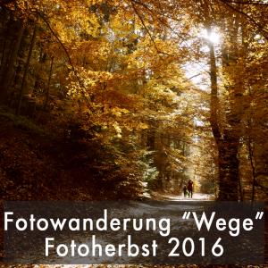 """Fotofestival Sandstein Fotoherbst Sandstein 2016 Fotowanderung """"Seele der Wege"""" Samstag, 5.11.16, ab 10 Uhr"""