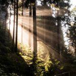 Fotowanderung Rathener Gebiet