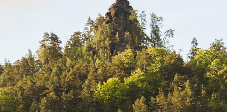 Fotowanderung: Das Dittersbacher Felsengebiet