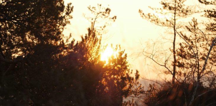 Fototour Sonnenaufgang auf dem Gohrisch