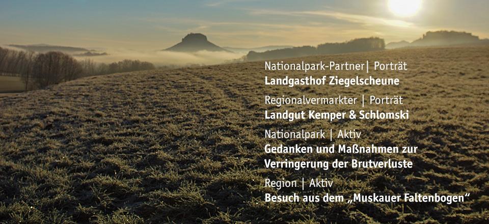 März 2019 - 108. Ausgabe Sandstein Schweizer