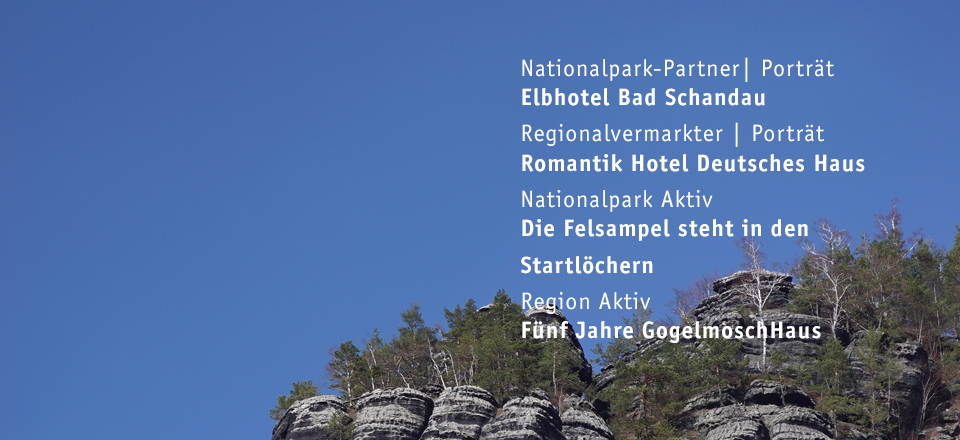 April 2019 - 109. Ausgabe Sandstein Schweizer
